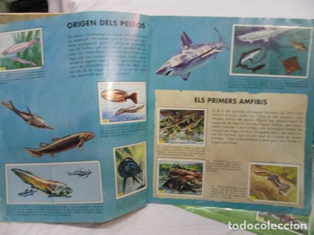Coleccionismo Álbum: Dinosaurs Club Super 3. Álbum de Cromos completo. - Foto 7 - 68883897