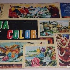 Coleccionismo Álbum: ALBUM DE CROMOS COMPLETO VIDA Y COLOR 1 , ALBUMES ESPAÑOLES S.A 1965. Lote 68994577