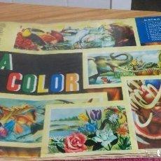 Coleccionismo Álbum: ÁLBUM COMPLETO VIDA Y COLOR 1965. Lote 71839367