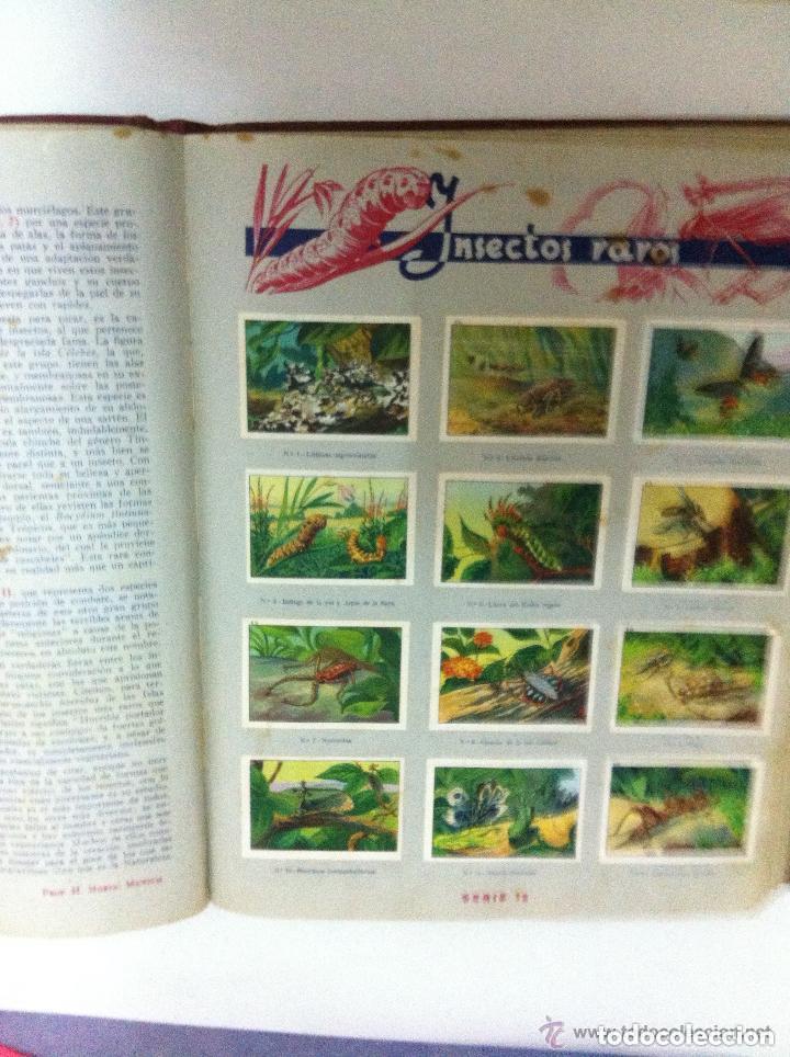 Coleccionismo Álbum: nestlé -las maravillas del mundo- completo - Foto 2 - 72187395