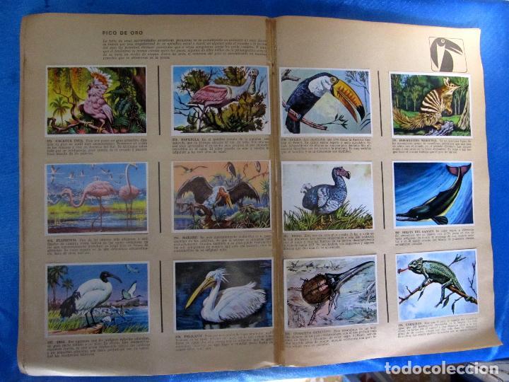 Coleccionismo Álbum: ÁLBUM COMPLETO. HISTORIA NATURAL. EDITORIAL BRUGUERA, 1967. - Foto 6 - 75411537