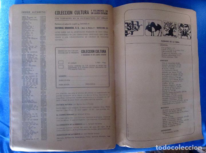 Coleccionismo Álbum: ÁLBUM COMPLETO. HISTORIA NATURAL. EDITORIAL BRUGUERA, 1967. - Foto 7 - 75411537