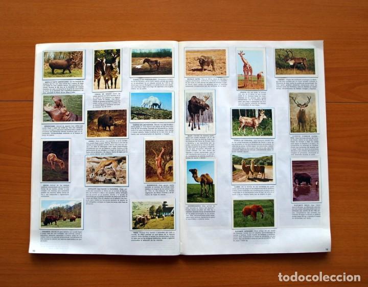 Coleccionismo Álbum: Álbum Naturaleza - Editorial Fher 1981 - Completo - Ver fotos en el interior - Foto 9 - 80745334