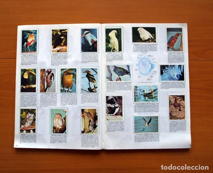 Coleccionismo Álbum: Álbum Naturaleza - Editorial Fher 1981 - Completo - Ver fotos en el interior - Foto 11 - 80745334