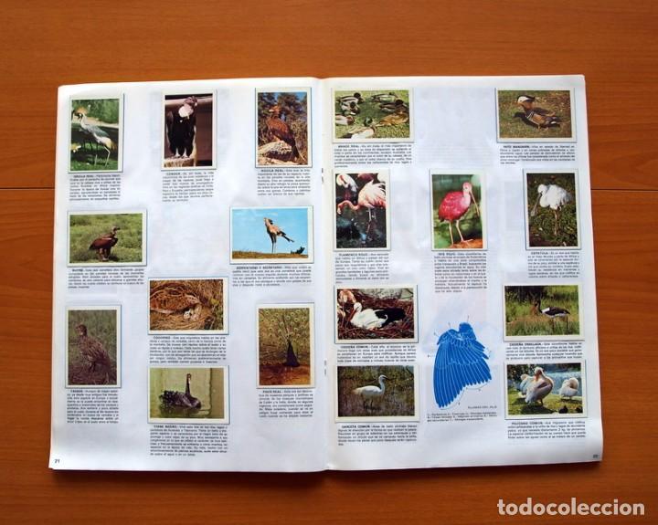 Coleccionismo Álbum: Álbum Naturaleza - Editorial Fher 1981 - Completo - Ver fotos en el interior - Foto 12 - 80745334