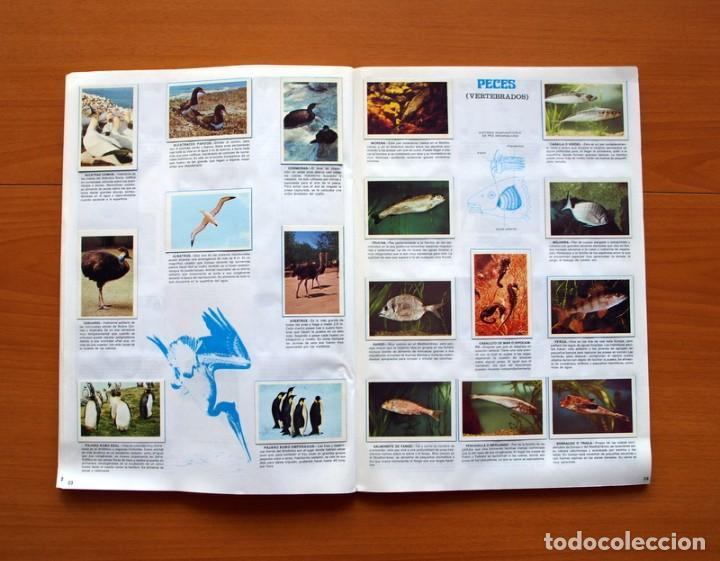 Coleccionismo Álbum: Álbum Naturaleza - Editorial Fher 1981 - Completo - Ver fotos en el interior - Foto 13 - 80745334