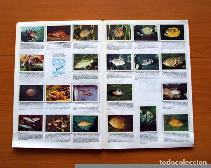 Coleccionismo Álbum: Álbum Naturaleza - Editorial Fher 1981 - Completo - Ver fotos en el interior - Foto 14 - 80745334