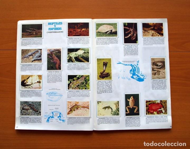 Coleccionismo Álbum: Álbum Naturaleza - Editorial Fher 1981 - Completo - Ver fotos en el interior - Foto 15 - 80745334
