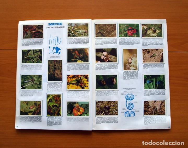Coleccionismo Álbum: Álbum Naturaleza - Editorial Fher 1981 - Completo - Ver fotos en el interior - Foto 16 - 80745334