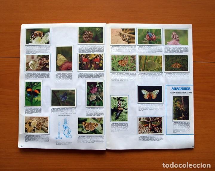 Coleccionismo Álbum: Álbum Naturaleza - Editorial Fher 1981 - Completo - Ver fotos en el interior - Foto 17 - 80745334