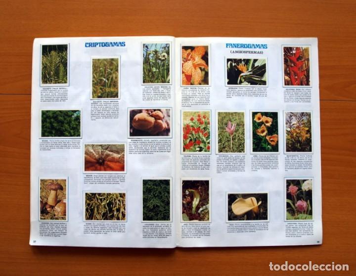Coleccionismo Álbum: Álbum Naturaleza - Editorial Fher 1981 - Completo - Ver fotos en el interior - Foto 20 - 80745334