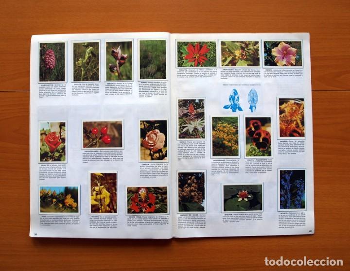 Coleccionismo Álbum: Álbum Naturaleza - Editorial Fher 1981 - Completo - Ver fotos en el interior - Foto 21 - 80745334