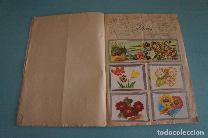 Coleccionismo Álbum: ÁLBUM COMPLETO DE NATURALEZA Y COLOR AÑO 1980 DE CAREN - Foto 3 - 86348552