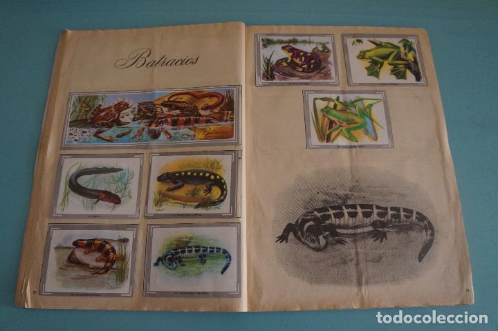 Coleccionismo Álbum: ÁLBUM COMPLETO DE NATURALEZA Y COLOR AÑO 1980 DE CAREN - Foto 15 - 86348552