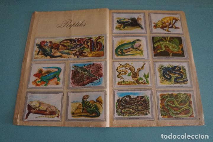 Coleccionismo Álbum: ÁLBUM COMPLETO DE NATURALEZA Y COLOR AÑO 1980 DE CAREN - Foto 16 - 86348552