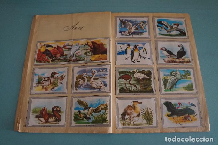 Coleccionismo Álbum: ÁLBUM COMPLETO DE NATURALEZA Y COLOR AÑO 1980 DE CAREN - Foto 18 - 86348552