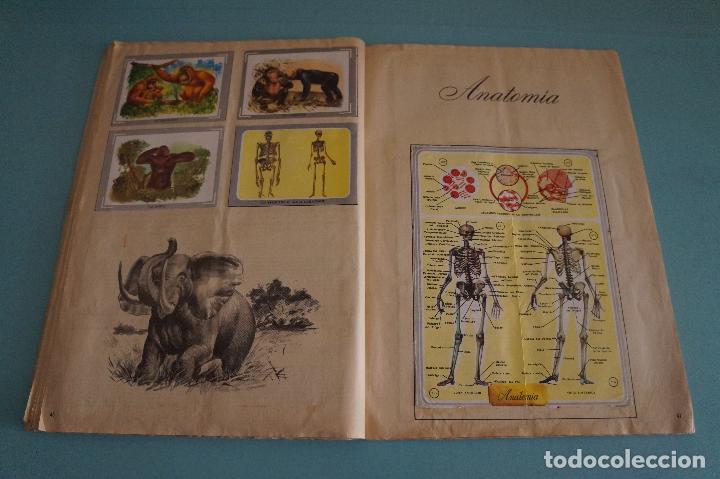 Coleccionismo Álbum: ÁLBUM COMPLETO DE NATURALEZA Y COLOR AÑO 1980 DE CAREN - Foto 27 - 86348552