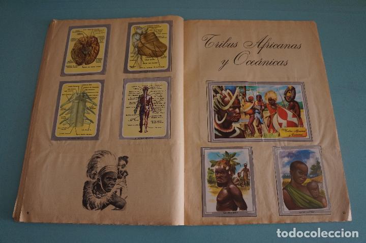 Coleccionismo Álbum: ÁLBUM COMPLETO DE NATURALEZA Y COLOR AÑO 1980 DE CAREN - Foto 30 - 86348552