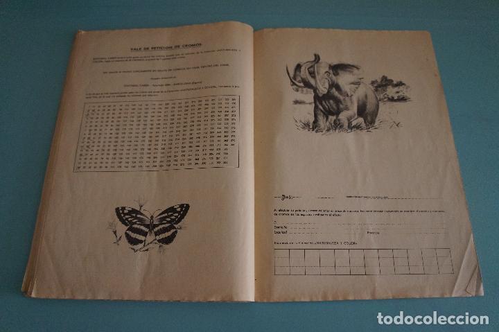 Coleccionismo Álbum: ÁLBUM COMPLETO DE NATURALEZA Y COLOR AÑO 1980 DE CAREN - Foto 35 - 86348552