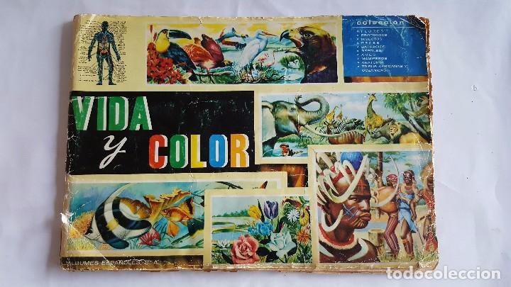 F 1764 ALBUM COMPLETO DE CROMOS VIDA Y COLOR - ANIMALES, FLORES, ANATOMIA Y TRIBUS 1965 (Coleccionismo - Cromos y Álbumes - Álbumes Completos)
