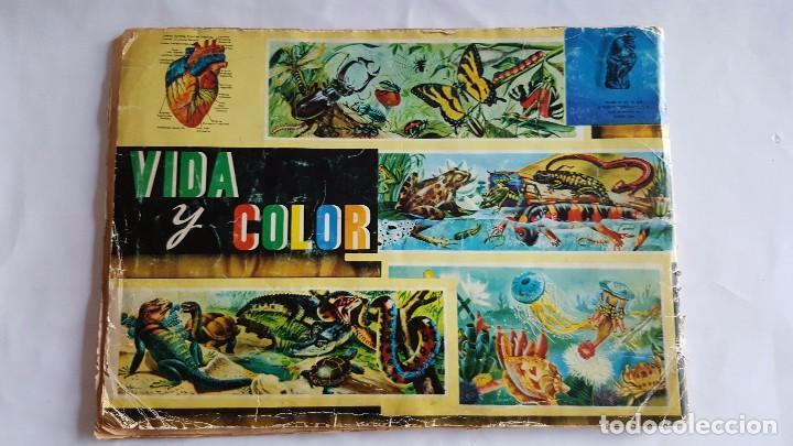 Coleccionismo Álbum: f 1764 ALBUM COMPLETO DE CROMOS VIDA Y COLOR - ANIMALES, FLORES, ANATOMIA y TRIBUS 1965 - Foto 2 - 87679856