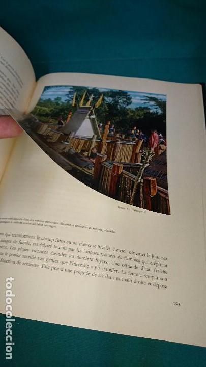 Coleccionismo Álbum: ÁLBUM NESTLÉ, QUEL MONDE ETRANGE, FRANCES - Foto 5 - 89100040