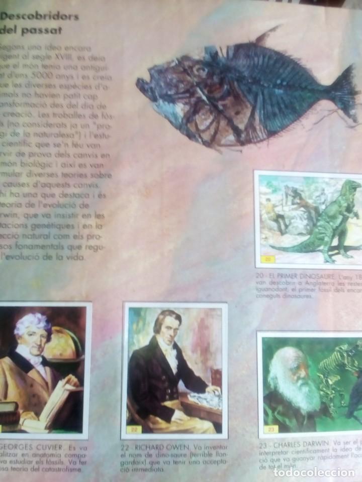 Coleccionismo Álbum: DINOSAURS. DE PANINI.COLECCION DE 180 CROMOS COMPLETO. - Foto 4 - 95461659