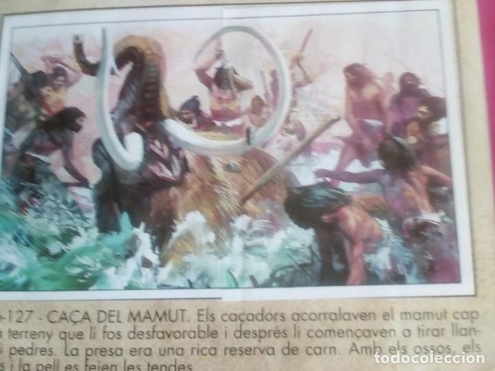 Coleccionismo Álbum: DINOSAURS. DE PANINI.COLECCION DE 180 CROMOS COMPLETO. - Foto 13 - 95461659