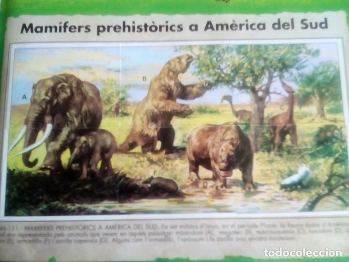 Coleccionismo Álbum: DINOSAURS. DE PANINI.COLECCION DE 180 CROMOS COMPLETO. - Foto 14 - 95461659