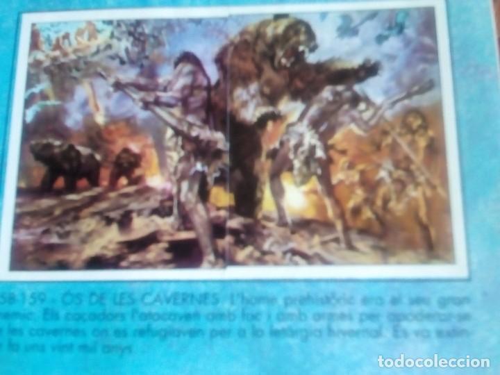 Coleccionismo Álbum: DINOSAURS. DE PANINI.COLECCION DE 180 CROMOS COMPLETO. - Foto 16 - 95461659