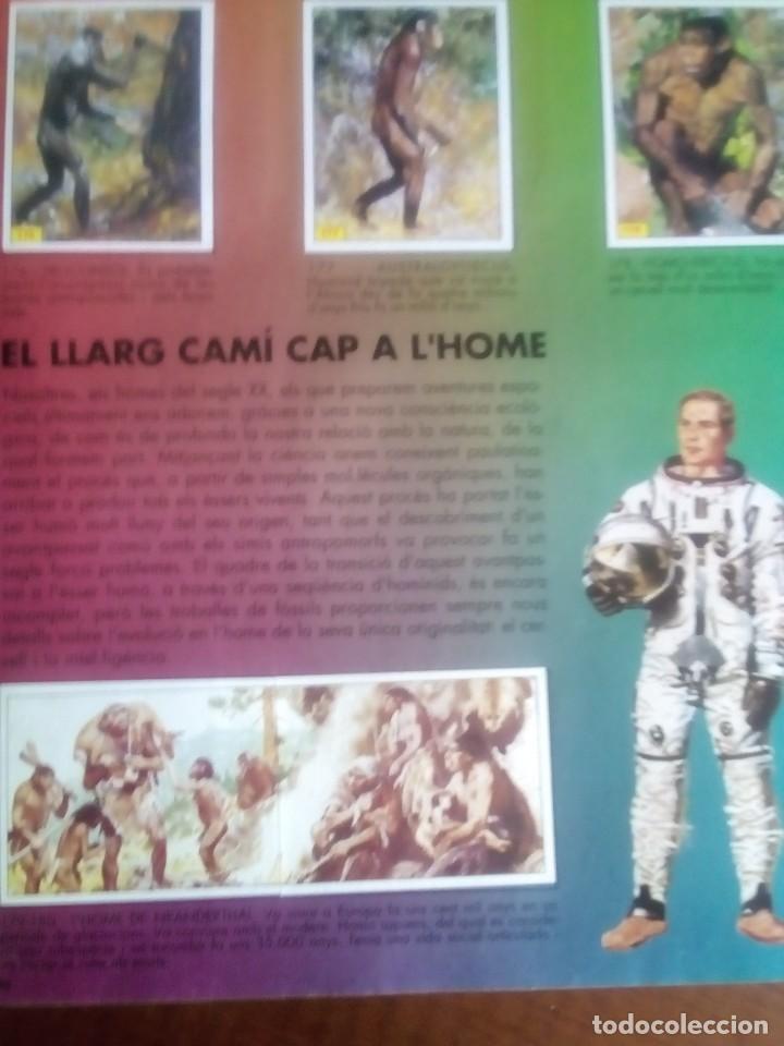Coleccionismo Álbum: DINOSAURS. DE PANINI.COLECCION DE 180 CROMOS COMPLETO. - Foto 17 - 95461659