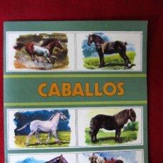 Coleccionismo Álbum: ALBUM CROMOS CABALLOS COLECCION ZOO. SUSAETA EDICIONES S.A. COMPLETO. Lote 102690347