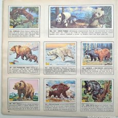 Coleccionismo Álbum: ALBUM DE ANIMALES. PANINI. COMPLETO CON 240 CROMOS. MUY BUEN ESTADO. Lote 203405922