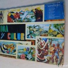 Coleccionismo Álbum: ALBUM, VIDA Y COLOR , 1965, ALBUNES ESPAÑOLES S.A, COMPLETO 380 CROMOS GRANDES. Lote 115696203