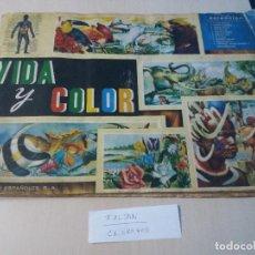 Coleccionismo Álbum: ALBUM, VIDA Y COLOR , 1965, ALBUNES ESPAÑOLES S.A, FALTAN 11 CROMOS DE 380 + REGALO LEER ANUNCIO. Lote 115707863