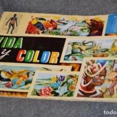 Coleccionismo Álbum: VINTAGE - ÁLBUM VIDA Y COLOR - COMPLETO - 1965 - COMPLETO - BUEN ESTADO GENERAL - HAZME UNA OFERTA. Lote 117008635