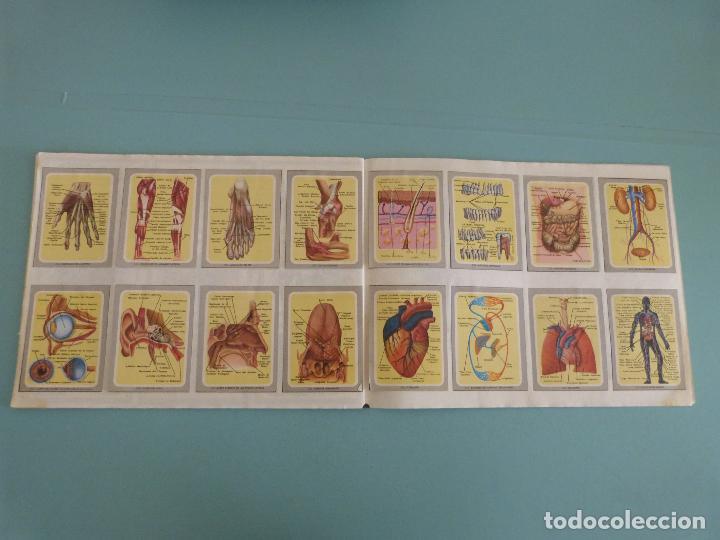 Coleccionismo Álbum: ÁLBUM COMPLETO DE VIDA Y COLOR AÑO 1992 DE COMICROMO VER BIEN FOTOS - Foto 16 - 119623571