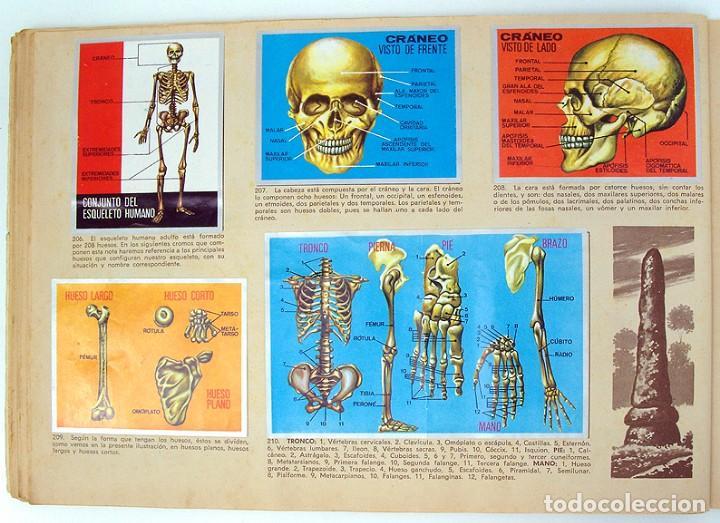 2 Album Completos 1968 Zoologia Y Botanica Y 19 Vendido En Subasta