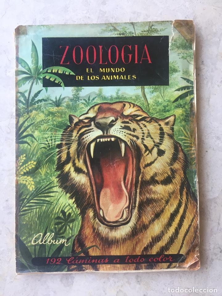 ALBUM ZOOLOGIA COMPLETO. EDICIONES FERCA 1960-1961 (Coleccionismo - Cromos y Álbumes - Álbumes Completos)