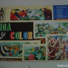Coleccionismo Álbum: ALBUM VIDA Y COLOR- 1965- COMPLETO. Lote 126373039