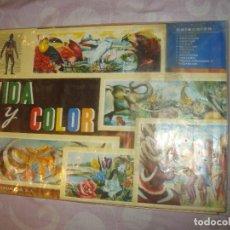 Collectionnisme Album: ALBUM DE CROMOS VIDA Y COLOR COMPLETO . Lote 127969419