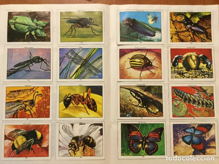 Coleccionismo Álbum: ALBUM DE CROMOS COMPLETO CIENCIAS NATURALES 1. BUEN ESTADO. AÑO 1982 - Foto 4 - 132224118