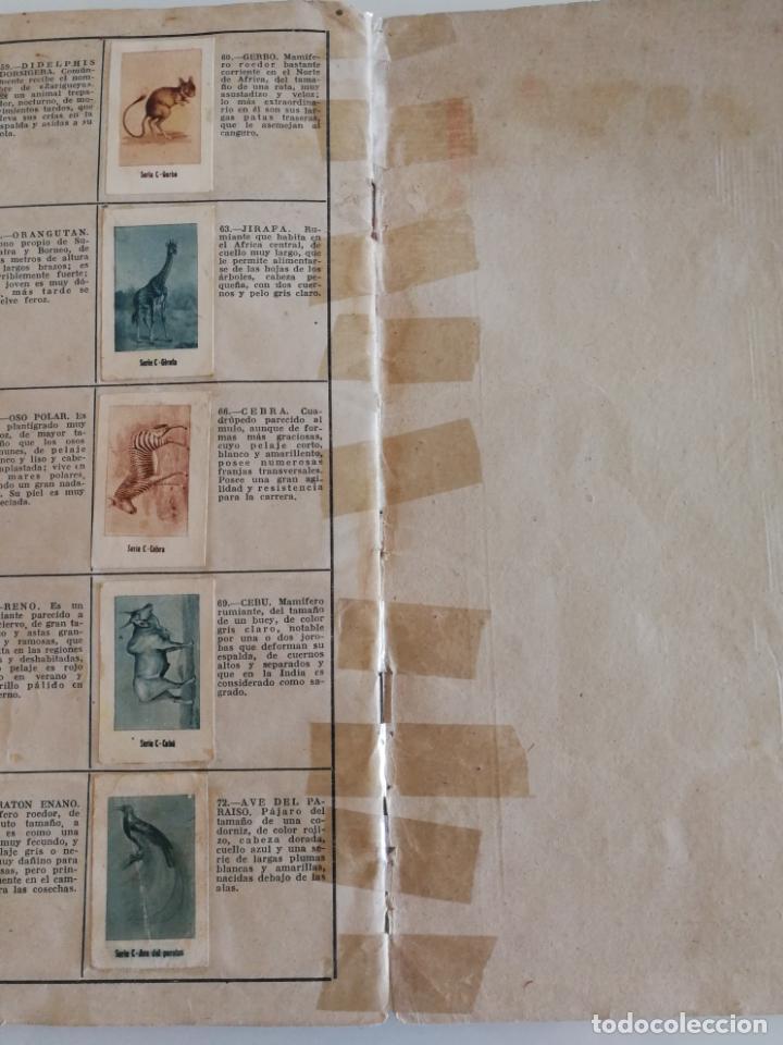 Coleccionismo Álbum: ALBUM CONDIMENTOS AZAFRANES CARMENCITA ACTORES MUNDO ANIMAL COMPLETO - Foto 11 - 134080606