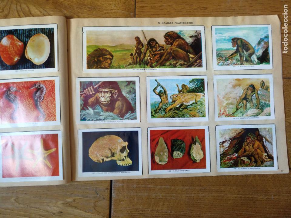 Coleccionismo Álbum: LOTE DE 3 ALBUMES CROMOS ANTIGUOS , GEO CIENCIAS AÑOS 60 , BATMAN Y VIDA Y COLOR - Foto 21 - 134330858