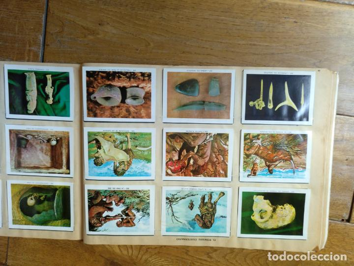 Coleccionismo Álbum: LOTE DE 3 ALBUMES CROMOS ANTIGUOS , GEO CIENCIAS AÑOS 60 , BATMAN Y VIDA Y COLOR - Foto 26 - 134330858