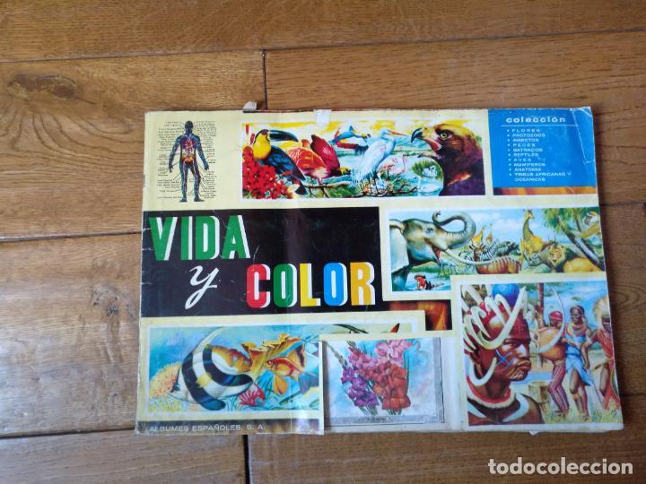 Coleccionismo Álbum: LOTE DE 3 ALBUMES CROMOS ANTIGUOS , GEO CIENCIAS AÑOS 60 , BATMAN Y VIDA Y COLOR - Foto 28 - 134330858
