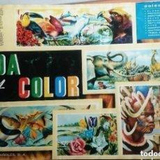 Coleccionismo Álbum: VIDA Y COLOR . Lote 135477730