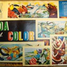 Coleccionismo Álbum: ALBUM VIDA Y COLOR DE ALBUMES ESPAÑOLES COMPLETO (VER FOTOS DE TODAS LAS PAGINAS). Lote 135480310