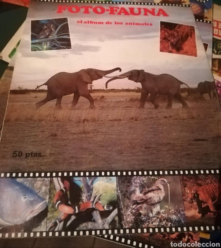 ALBUM COMPLETO DE ANIMALES FOTO-FAUNA. 1985 (Coleccionismo - Cromos y Álbumes - Álbumes Completos)