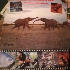 Coleccionismo Álbum: ALBUM COMPLETO DE ANIMALES FOTO-FAUNA. 1985. Lote 135829646
